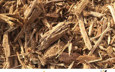 L'activité bois : en plein essor avec l'arrivée du froid
